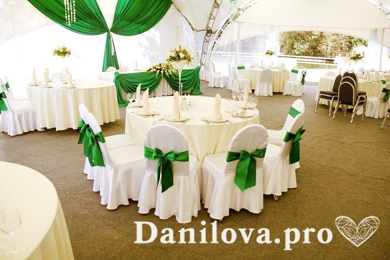 зеленое оформление стульев на свадьбу